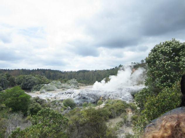 Rotorua- geyser